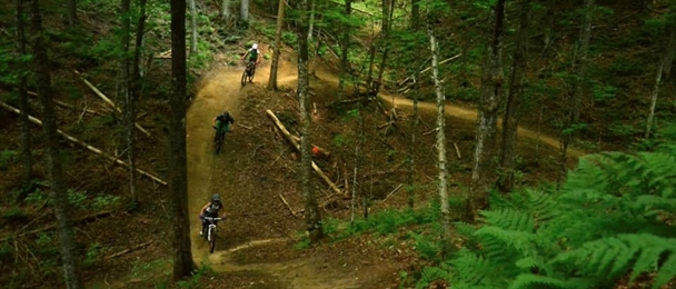 video kingdom trails