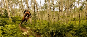 WBP Review Bike Snowmass