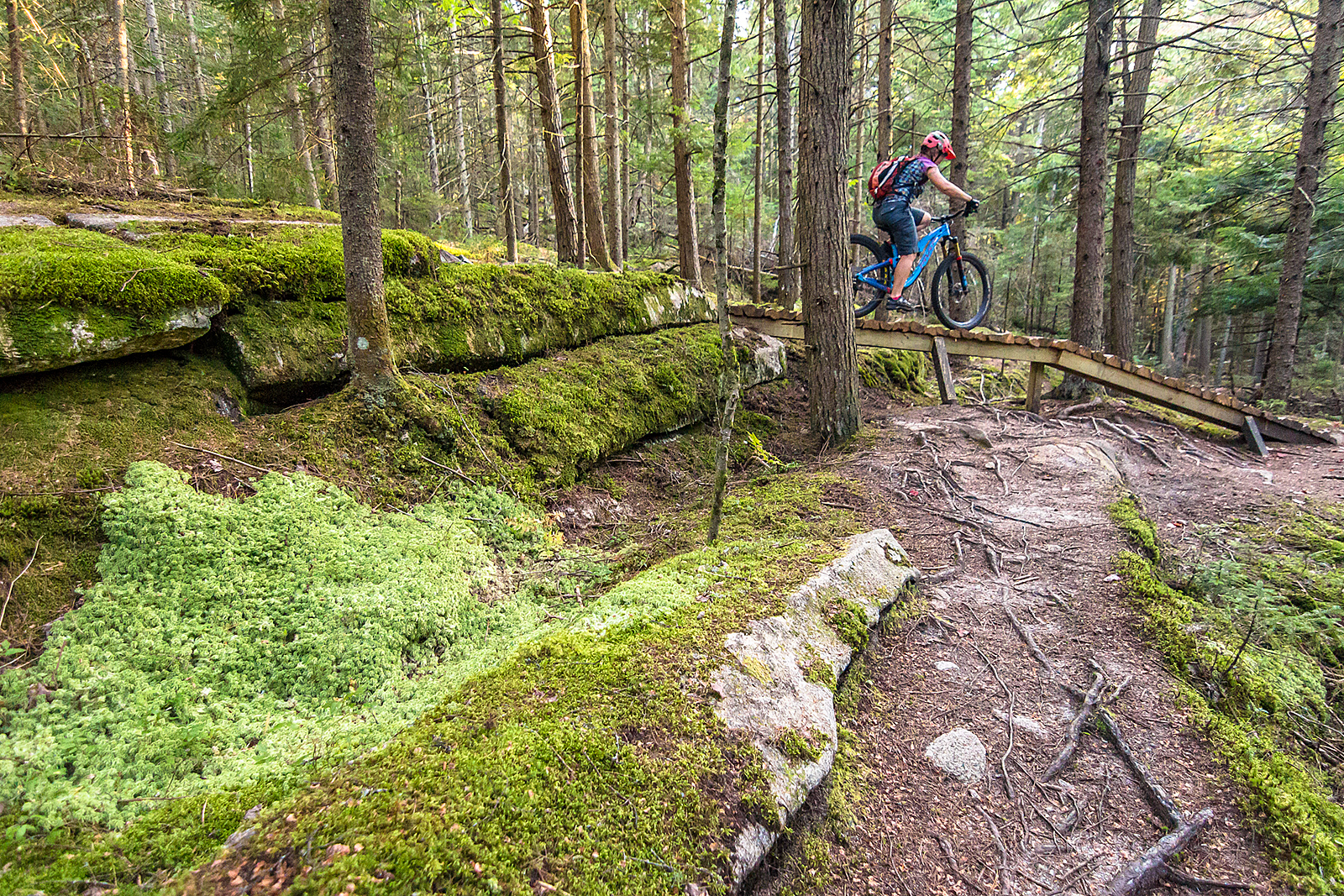Millstone Trails in Barre Vermont | Put your MTB skills to